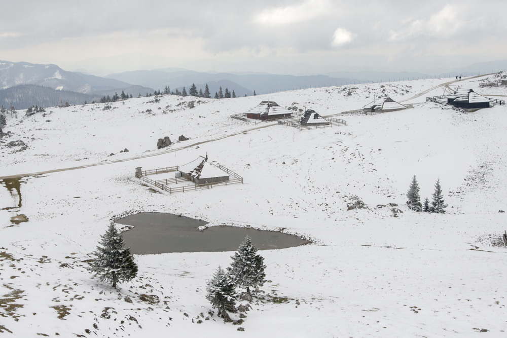 V snegu
