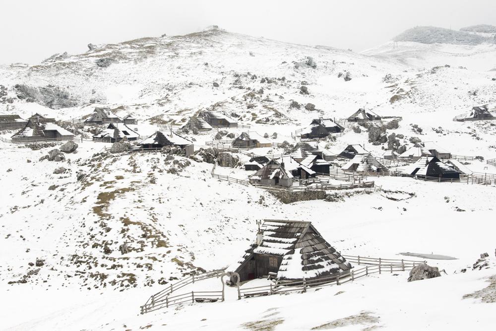 Zimska vasica
