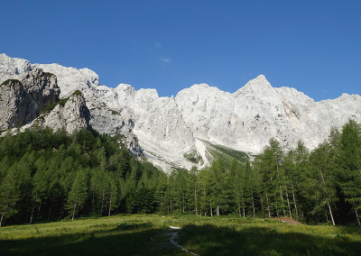 Jasa na Okrešlju in pogled na Tursko goro, Malo Rinko, Štajersko Rino