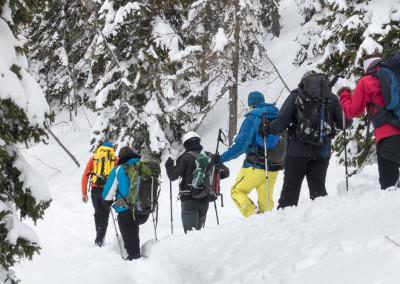 Varno gibanje v zimskih razmerah