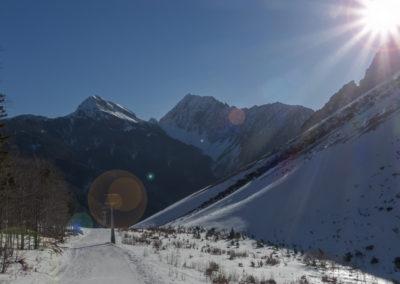 Pogled nazaj na greben Košute