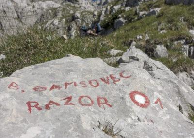 Proti Gamsovcu