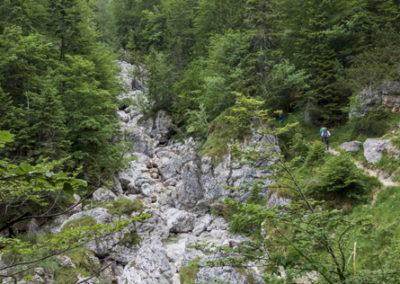 Pričetek poti ob Belem potoku